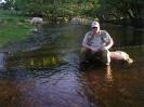 Kossor i vattnet