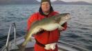 Anders med en torsk från Havöysund