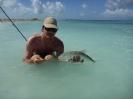 Strandfiske