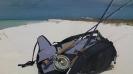 Paus på en öde ö